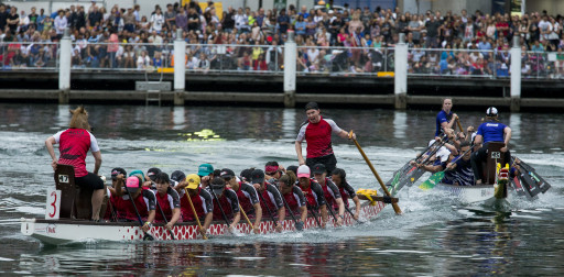Dragon boat race in Darling Harbour on Australia Day